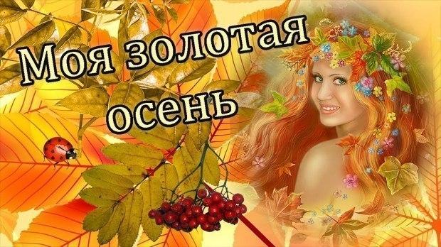 """""""Золотая осень---недотрога"""""""