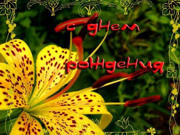 Класс, красивая открытка для лили