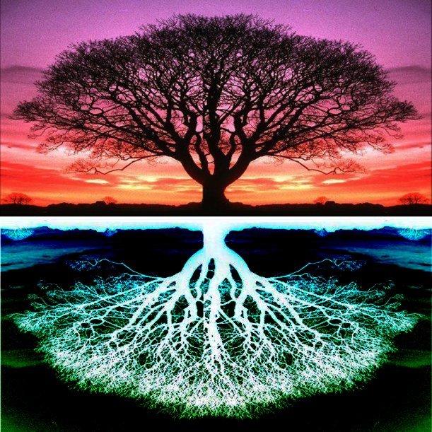 Дерево мира