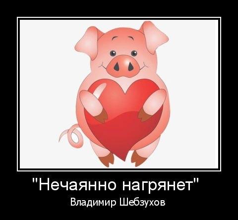 https://www.chitalnya.ru/upload/465/532173bec5d372de65034e9fbd49e5f1.jpg