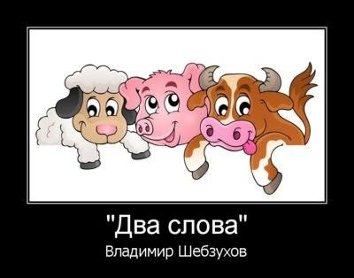 https://www.chitalnya.ru/upload/495/60b2d3955d2410b5b0c1069e749e9bf3.jpg