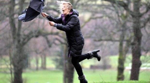 Ветер, ветер, ветерок.  Стихи Надежды - моей любимой девушки