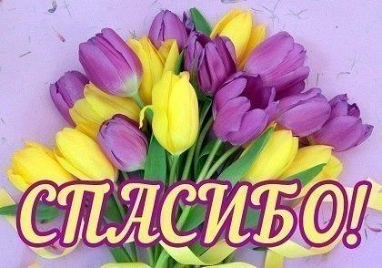 https://www.chitalnya.ru/upload/581/c4d397f259efb23ae9ac0a71794a19bf.jpg