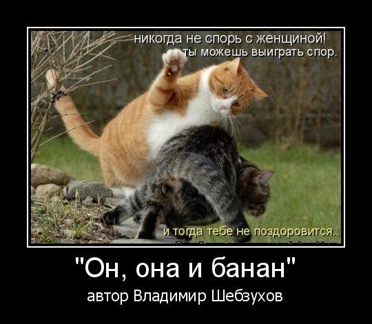 Владимир Шебзухов Женское - Страница 3 0db45ecfb78fdb2df7c78859ad1d2407