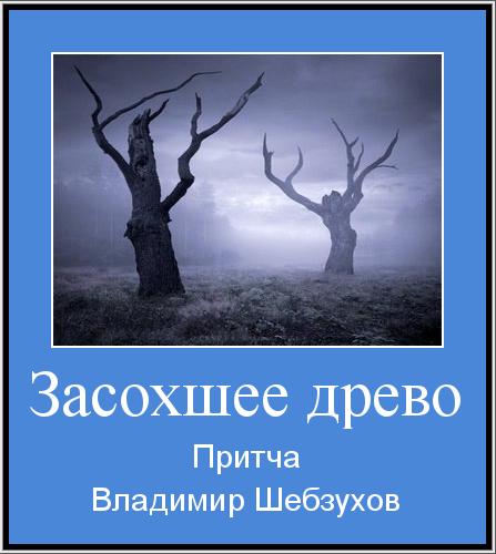 Притчи от Владимира Шебзухова - Страница 22 54ff713d4cdd016a8b031f38115aaaf0