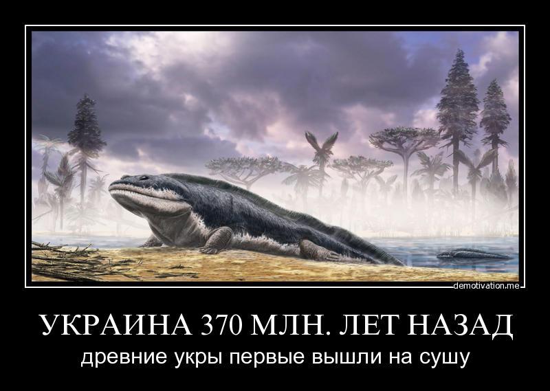 2fdcf16f57ece40316ab483716746868.jpg