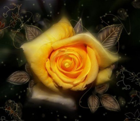 Роза красная-стихи