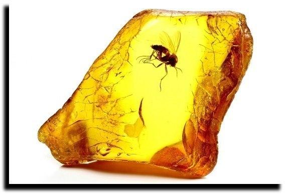 Пчёлка в янтаре...