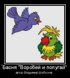 «Воробей и попугай» (Владимир Шебзухов)