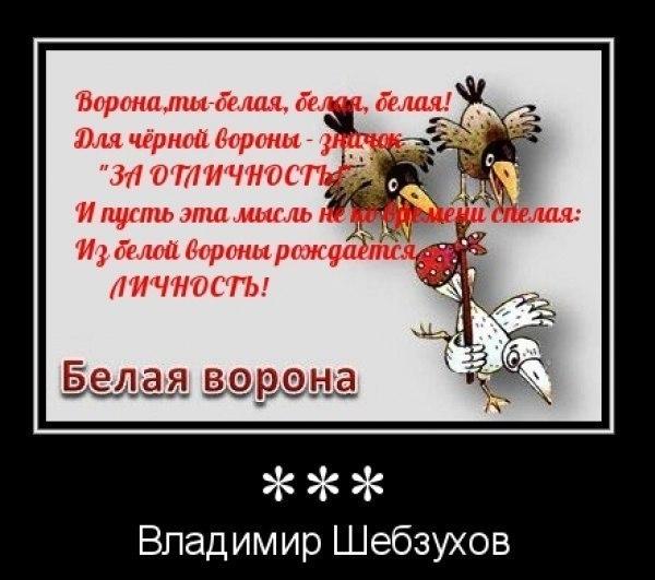 a8703b1b84397be2c6cf5651b1397566.jpg