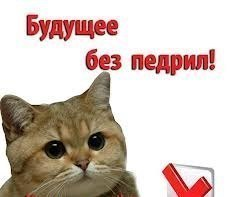 https://www.chitalnya.ru/upload/998/86de26e6190ab4485da59fc6fbcf9fa8.jpg