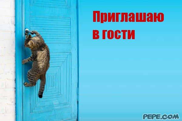 заказываю мясное приглашаю к тебя гости мужчину в москве материалы