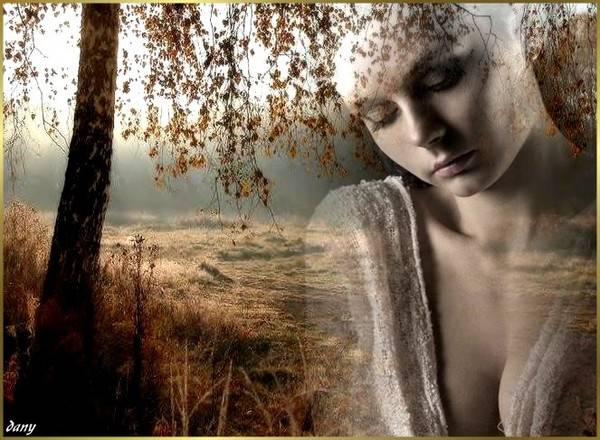 На столе коньяк и свечи догорют в тешине ветер по окну стучится вспоминая о тебе br /в зеркале моем мелькает отрожение твое br /только сердце точно знает почему