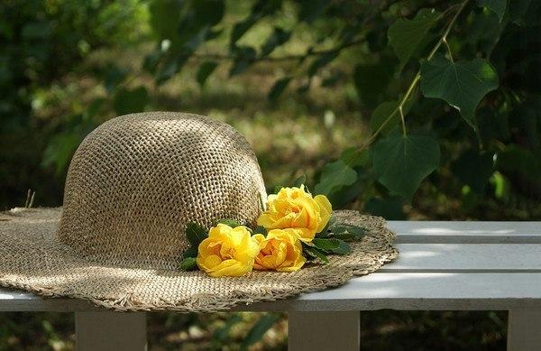 песня доброе лето тёплое лето текст караоке