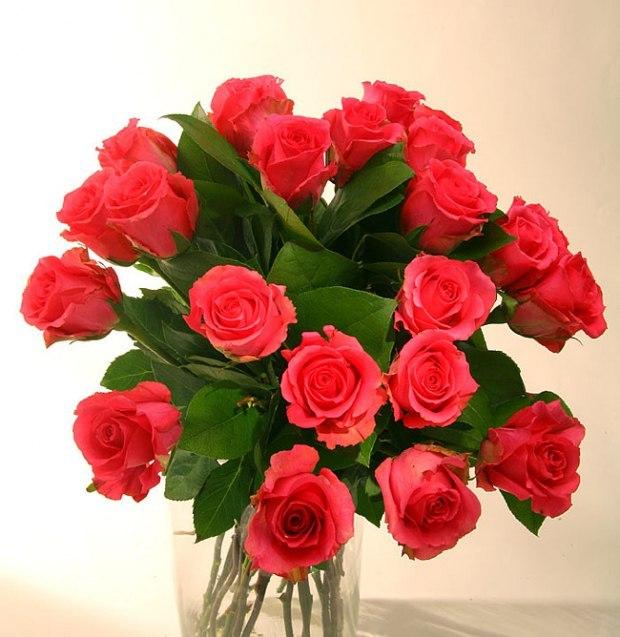 Лучшие, цветы для мамы фото открытка