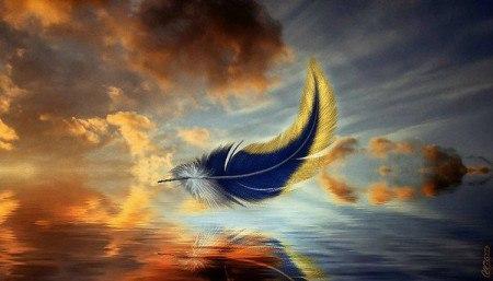 Моя душа, как раненая птица...
