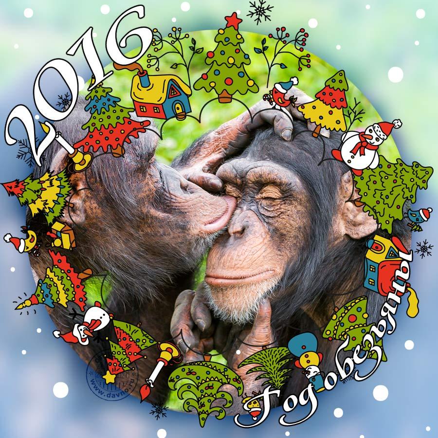 Картинке год обезьяны