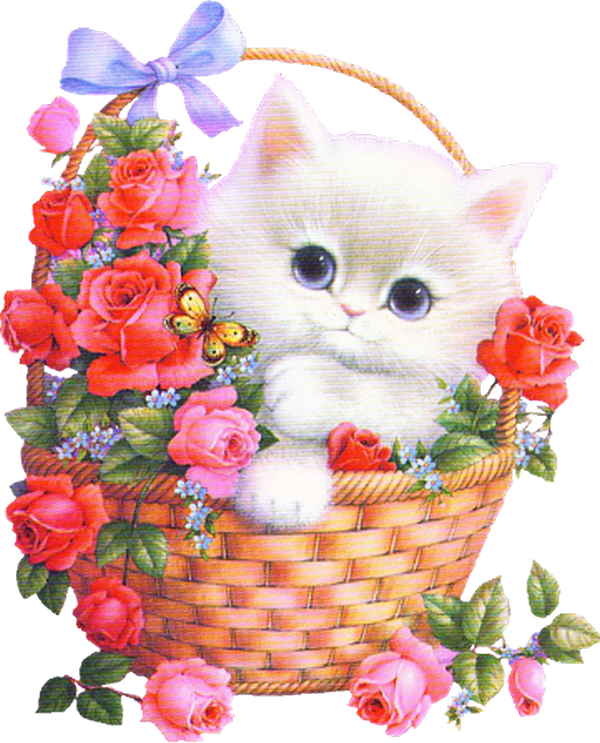 Картинка с днем рождения кот с цветами