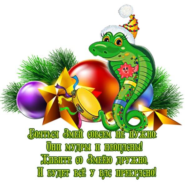 поздравление для года змеи миссия