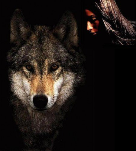 Отрава для волка 67