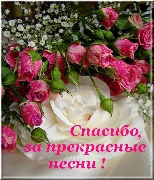 Написанные отзывы на сайте Изба-Читальня - автор Светлана Ромашина