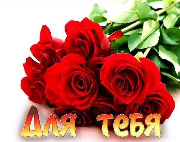 Скачать песню Виктор Лекарь — Эти розы для тебя в