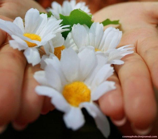 Открытка в руках цветы