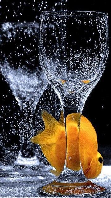 золотая рыбка песня слушать фабрика