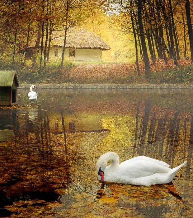 Что такое осень из репертуара группы ДДТ ~ Поэзия (Песня)