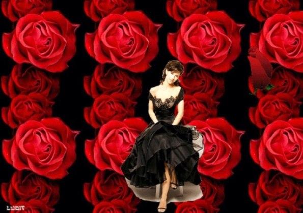 Картинки по запросу красные розы с шипами картинки