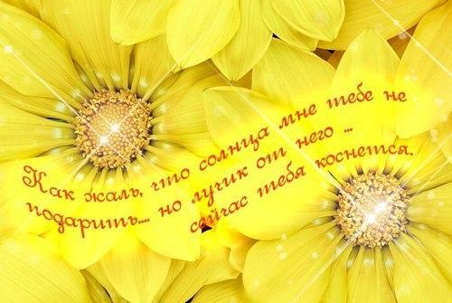 http://www.chitalnya.ru/upload2/432/11988711543381214.jpg