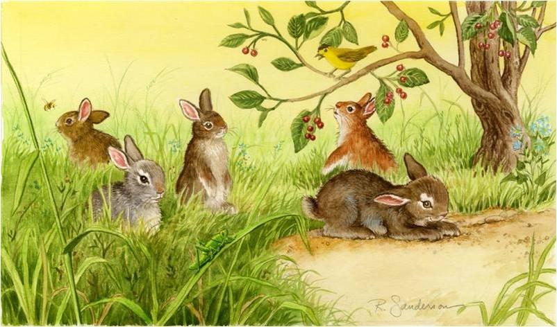 Картинки зайцев на полянке