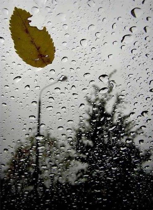 товарища гаражу картинки дождь за окном грусть водных растворах