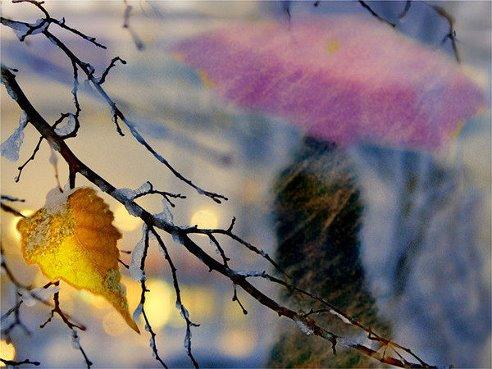 поздней осенью бывает иногда совсем как ранней весной там белый снег там черная земля