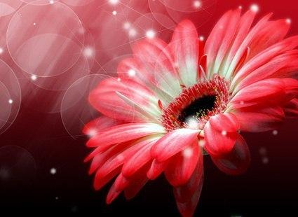красивые картинки разные про любовь