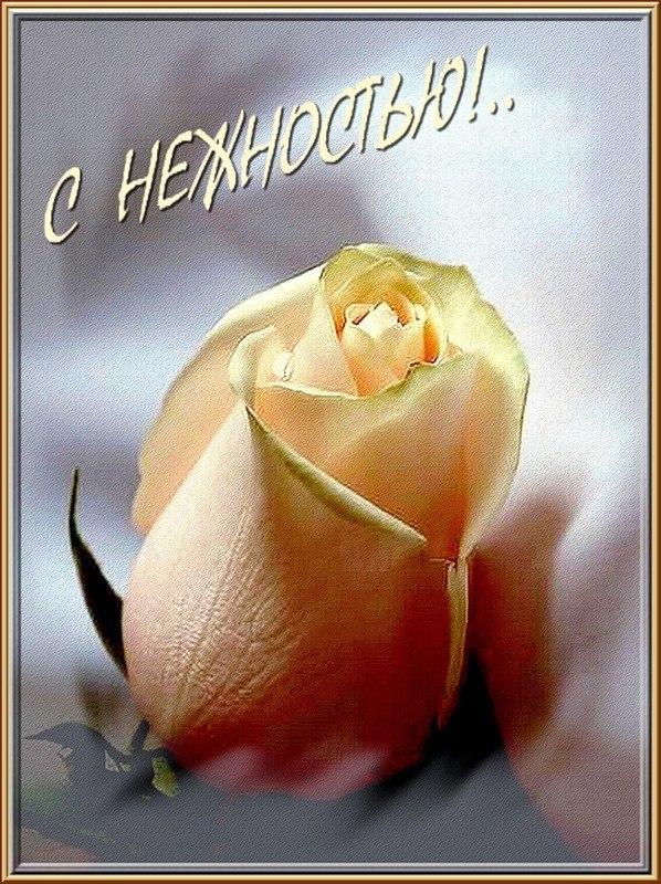 Днем рождения, открытка с нежностью и любовью от всего сердца