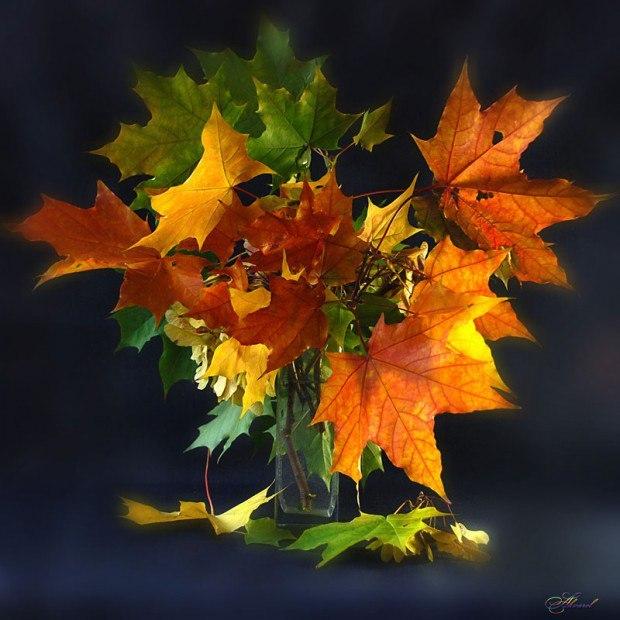 Холодная осень картинка