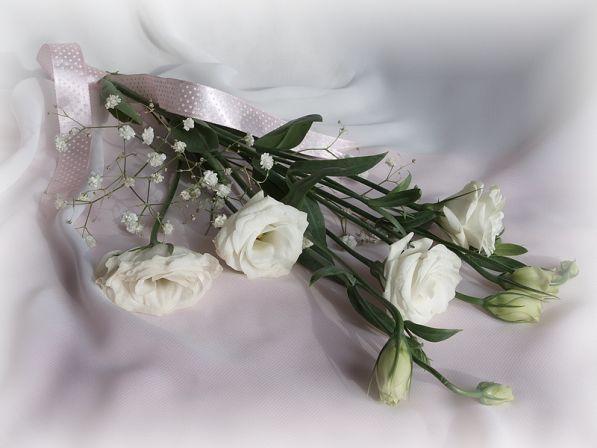 Открытки с днем рождения света красивые розы