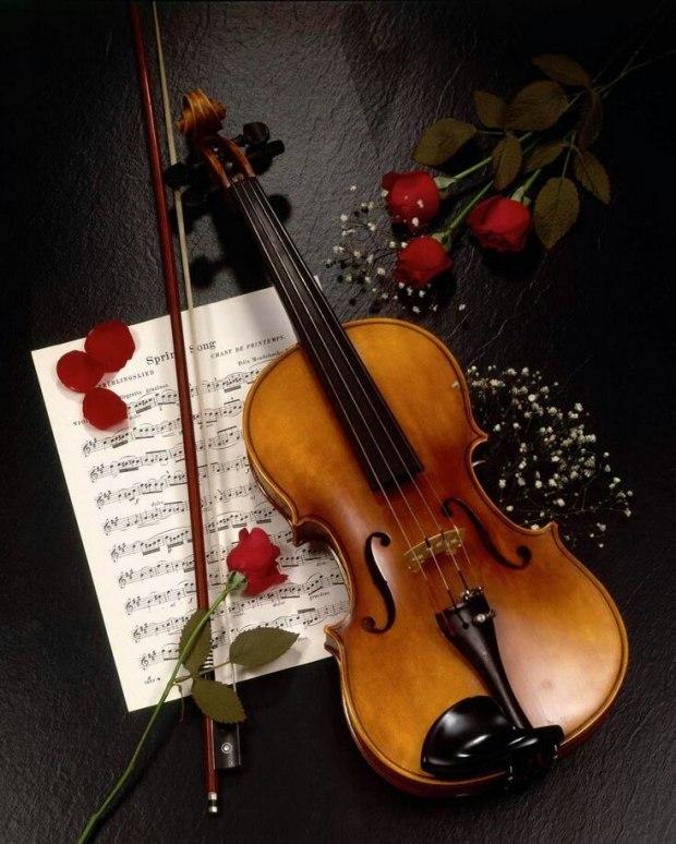 красивое поздравление скрипачу
