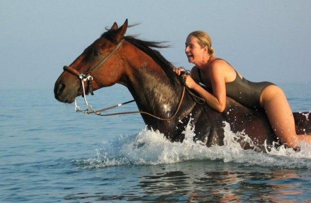 Юная мулатка трахается с конем