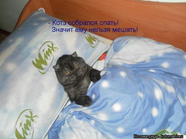 Открытка скоро спать
