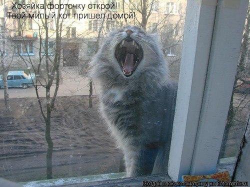 не ходи под окном у неверной скорбя