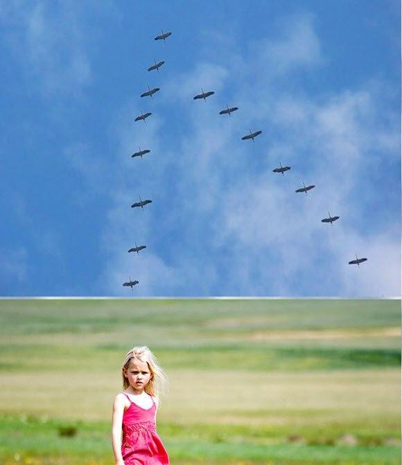 Они летают скачать песню
