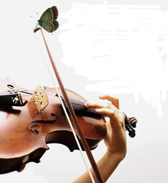стихи учителю скрипки милые