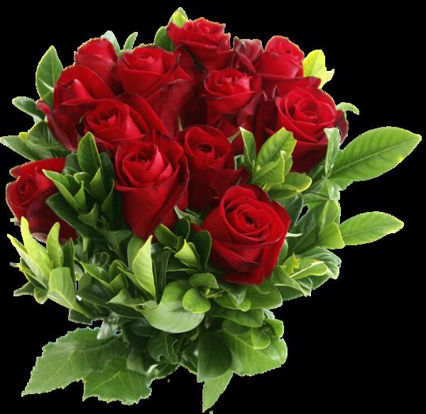 http://www.chitalnya.ru/upload2/834/583957d95235a2bb428e31a8c3043b8b.png