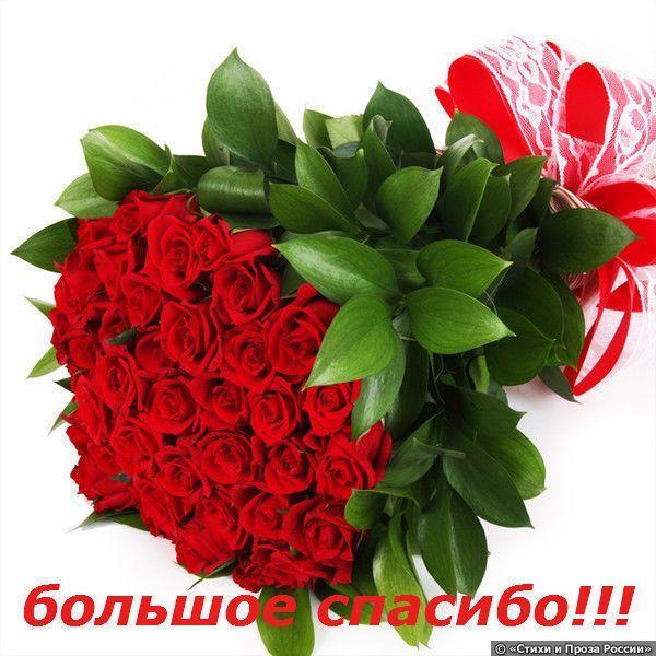 Поздравления с днем рождения маме елена 33