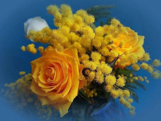 вот розы мимозы картинки урок рисования
