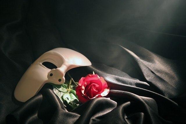 картинки в маске с розой