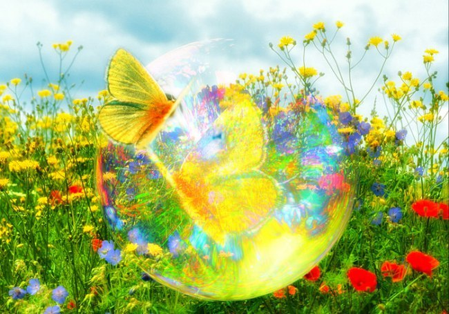http://www.chitalnya.ru/upload2/954/cab6673da4bc506b0ba8ea4b5d8f2587.jpg