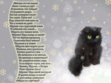 Черный кот авторы песни